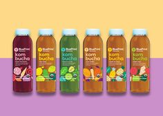 Illustration for a new line of kombucha drinks from BluePrint. The illustrations are based on the ingredients used in each flavour, giving the packaging a fresh and friendly feel. Creative concept and art direction by Bruce Mau Design. The drinks are av…