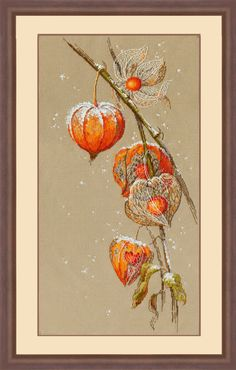 Cross Stitch Kit Golden Hands - Physalis by ArtfulStitchings on Etsy