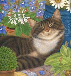illustrations by Anne Mortimer Anne Mortimer cats