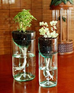 1 DIY glass planter