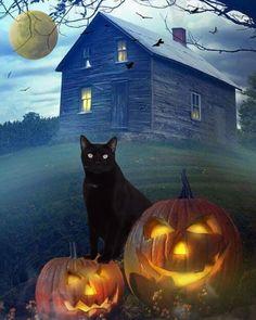 Fröhliches Halloween, Halloween Cartoons, Holidays Halloween, Halloween Decorations, Happy Halloween Quotes, Happy Halloween Pictures, Halloween Images, Halloween Artwork, Halloween Greetings