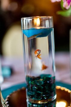 Incredibly unique centerpieces with goldfish inside! (Just make sure you find a happy home for the fishie friends after the reception!