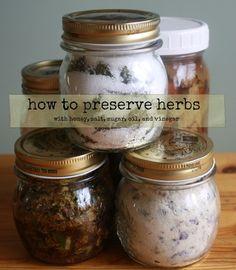 How to Preserve Herbs - How to preserve herbs in oil, vinegar, sugar, honey, salt and more! - by Healthy Green Kitchen
