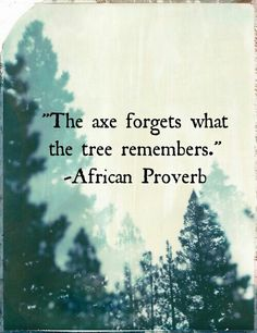 The axe forgets what the tree remembers...