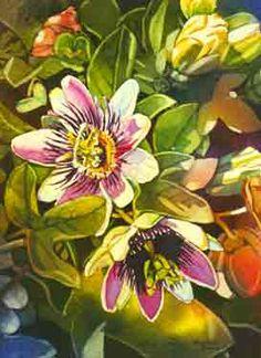 Mary Sorrows Hughes