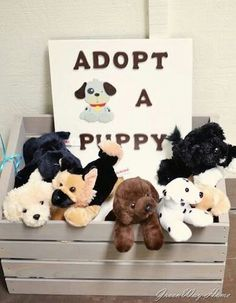 Kid's party idea- puppy or zoo animal whatever the theme is and this can be the favor. For a later birthday. Like once she can invite her own friends
