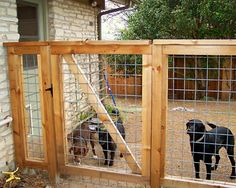 Bull Panel Gate - Bull Panel Gate You are in the right place about fence drawing Here we offer you the most beautiful - Diy Backyard Fence, Diy Dog Fence, Backyard Projects, Backyard Landscaping, Dog Fence Ideas Cheap, Fenced In Backyard Ideas, Dog Run Fence, Farm Fence, Fence Design