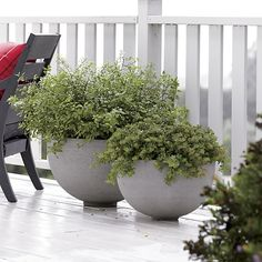 Ibarra Ficonstone Planters.  These would be lovely to plant a blueberry bush or similar in.  Crate and Barrel