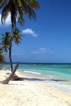 Tobago Trinidad