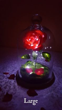 Items similar to Beauty and the Beast Enchanted Rose on Etsy Rose Centerpieces, Bridal Shower Centerpieces, 25th Birthday Ideas For Him, Beauty And The Beast Wedding Theme, Rose In A Glass, Fire Image, Quinceanera Decorations, Profile Pictures Instagram, Enchanted Rose