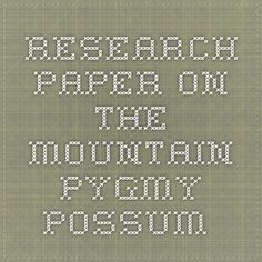 Research paper on the Mountain Pygmy-Possum
