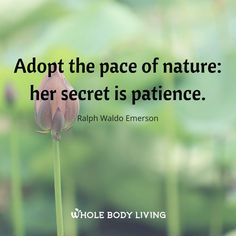 Pace Of Nature - https://wholebodyliving.com/pace-of-nature/ -Whole Body Living-#Adopt, #Inspire, #Life, #Motivate, #PaceOfNature, #Patience, #Quote