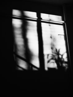 shadow #ANNsPhoto