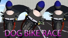 Bike Race Dog Finger Family Nursery english 3d  rhymes |  Children Anima...