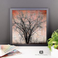 Art Tree Framed Poster Square Tree Print Poster by DawnMercerPhoto