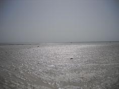 e quando il mare si ritira si vede un'immensa spiaggia