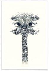 Ostrich Black & White - Premium Poster