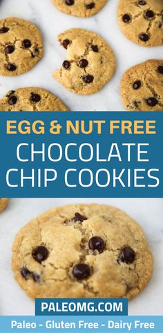 Are you looking for an egg free cookie recipe? We have an egg and nut free chocolate chip cookie recipe that is perfect for people with food sensitivities. Come check out this delicious egg free dessert recipe and save it to your dessert board so you can find it later. #healthydessert #eggfree Breakfast Dessert, Paleo Dessert, Dessert Recipes, How To Eat Paleo, Food To Make, Dairy Free Recipes, Paleo Recipes, Egg Free Desserts, Egg Free Cookies