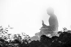 fading buddha