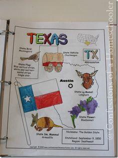 Texas State Study