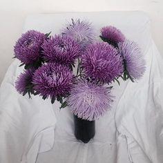 это цветы