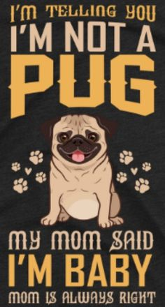 Mom And Baby, My Mom, Baby Friends, Pugs, Join, Movie Posters, Film Poster, Popcorn Posters, Pug Dogs