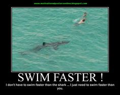 clock qoutes with pics from swim | Swim faster shark, I don't have to swim faster than the shark, I ...