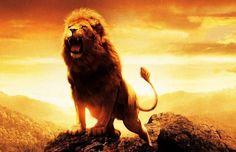Однажды ко льву пришла собака и вызвала его на бой. Но лев даже не обратил на неё внимания.  Тогда собака заявила: — Если ты не будешь со мной драться, я пойду и расскажу всем своим друзьям, что лев меня боится! На что лев ответил: — Пусть лучше меня осудят за трусость собаки, чем будут презирать львы за то, что я сражаюсь с собаками.