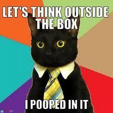 Business Cat Meme