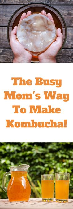 Why You Should Use The Kombucha Continuous Brew System! – The Organic Goat Lady Why You Should Use The Kombucha Continuous Brew System Kombucha Flavors, Kombucha Recipe, Kombucha Tea, Kombucha Brewing, Kombucha Benefits, Homebrewing, Probiotic Foods, Fermented Foods, Continuous Brew Kombucha