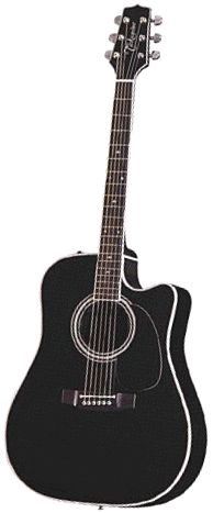 Looks just like my takamine guitar. Mine is wine red. Guitar Art, Acoustic Guitar, Backstage Music, Takamine Guitars, Beautiful Guitars, Hillbilly, Getting To Know You, Cool Toys, Envy