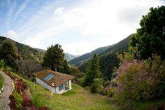 Dantica Cloud Forest lodge nuestro hotelito favorito