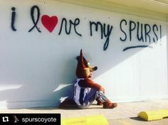 Spurs Coyote. I Love My Spurs