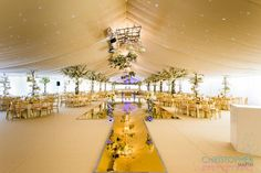 Gold tones throughout with our Gold Mirror Dance Floor