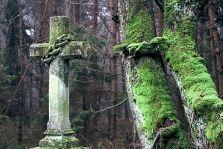 Polskie cmentarze. Metafizycznie - Polskie Krajobrazy