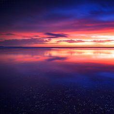 * Ocean Dreams *