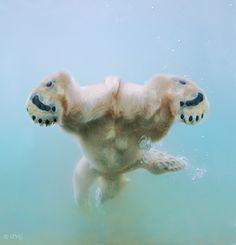 Water ballet by Olga Gladysheva, via 500px