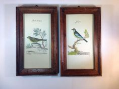 Vintage Pair of Bird Prints in Wood Frames Fringuello & Fanello Dell Aquila #Impressionism
