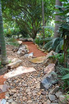 Dry Creek Bed and Path