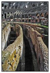 The Roman Colosseum is undoubtedly one of the worlds marvels of history and architecture. With the flooring exposed, an unparalleled view of the underground passageways has been revealed.
