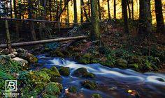 Mystic Desire #Romania #river #alexbobica #autumn #photography