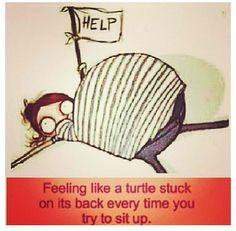 Help! I'm on my back and can't get up! Pretty much all the time now. Lol.
