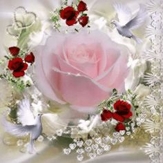 The perfect Pink Rose Animated GIF for your conversation. Discover and Share the best GIFs on Tenor. Flowers Gif, Beautiful Rose Flowers, Beautiful Gif, All Flowers, Gif Bonito, Hearts And Roses, Romantic Images, Glitter Graphics, Pink Roses