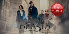 Win 1 of 3 Fantastic Beasts and Where to Find Them on Blu-ray... sweepstakes IFTTT reddit giveaways freebies contests