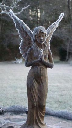 Frosty angel wings in Winter