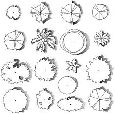 Arboles para plantas Arquitectónicos Planos.