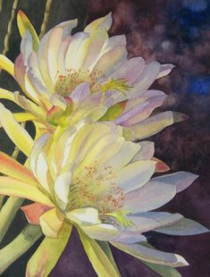 Cynthias Cactus Painting  - Cynthias Cactus Fine Art Print
