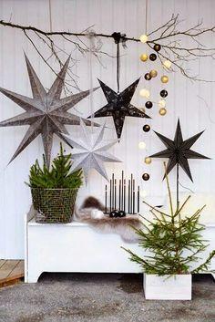 Sapins de Noël et étoiles Show Home via Nat et nature