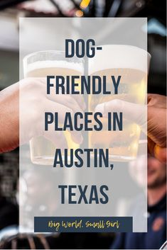 54 Dog-Friendly Bars and Restaurants in Austin, Texas 54 Dog-Friendly Bars and Restaurants in Austin, Texas 35 Dog-Friendly Bars and Restaurants in Aus Texas Travel, Dog Travel, Family Travel, Family Vacations, Things To Do In Austin Tx, Texas Things, Living In Austin Texas, Austin Brunch, Texas Swimming Holes