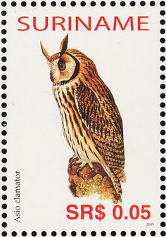 Striped Owl stamps - mainly images - gallery format